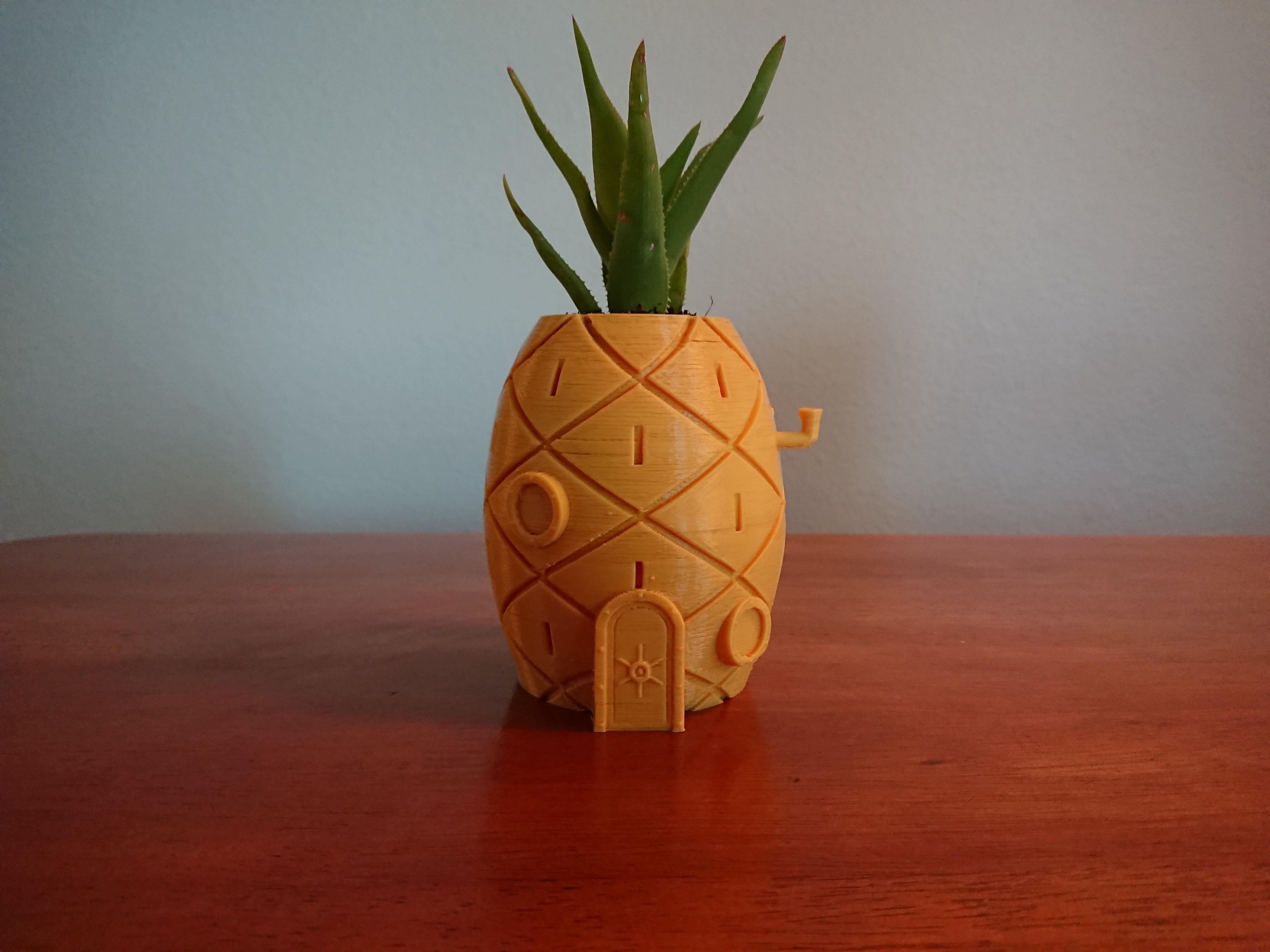 DSC_0113.jpg Download free STL file Spongebob's House Plant Pot • 3D printer template, reno77