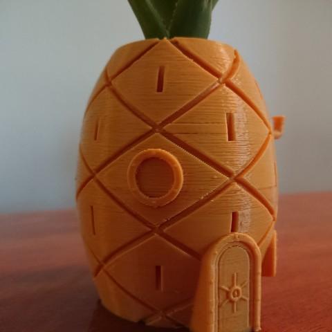 DSC_0114.jpg Download free STL file Spongebob's House Plant Pot • 3D printer template, reno77