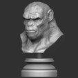 8.JPG Download OBJ file Koba Monkey • 3D print model, Bstar3Dart