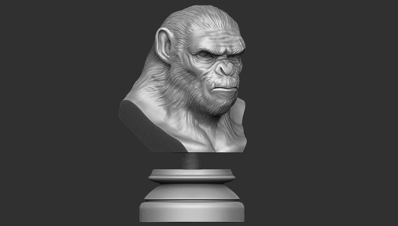 2.JPG Download OBJ file Koba Monkey • 3D print model, Bstar3Dart