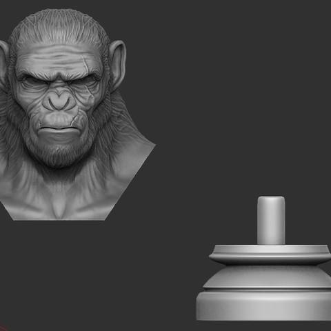 10.JPG Download OBJ file Koba Monkey • 3D print model, Bstar3Dart