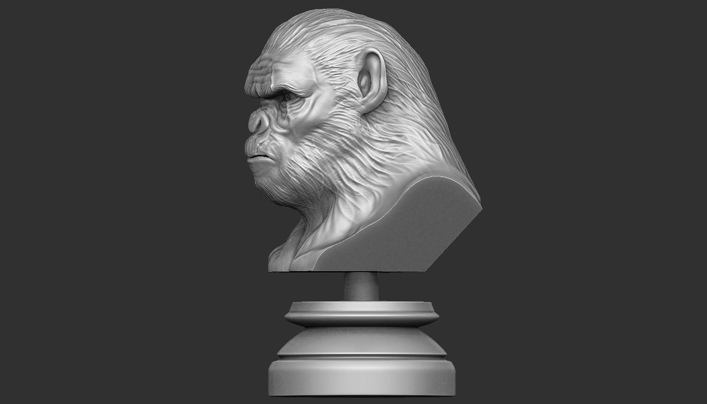 7.JPG Download OBJ file Koba Monkey • 3D print model, Bstar3Dart