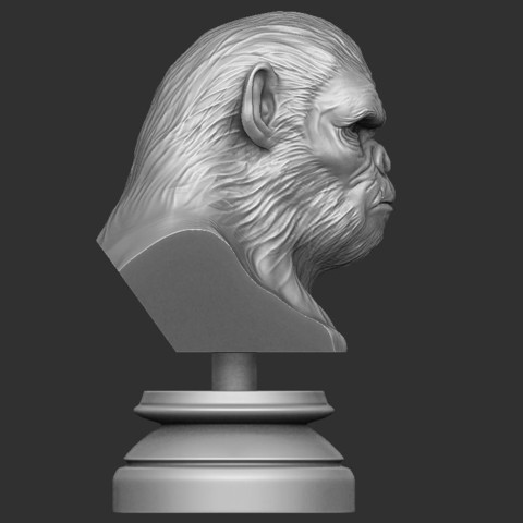 3.JPG Download OBJ file Koba Monkey • 3D print model, Bstar3Dart