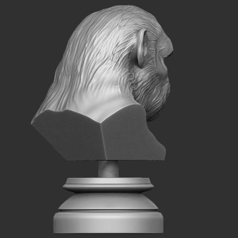 4.JPG Download OBJ file Koba Monkey • 3D print model, Bstar3Dart