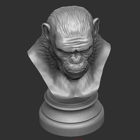 9.JPG Download OBJ file Koba Monkey • 3D print model, Bstar3Dart