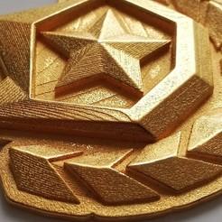 Diseños 3D Collar de la insignia del pase de temporada, miwi