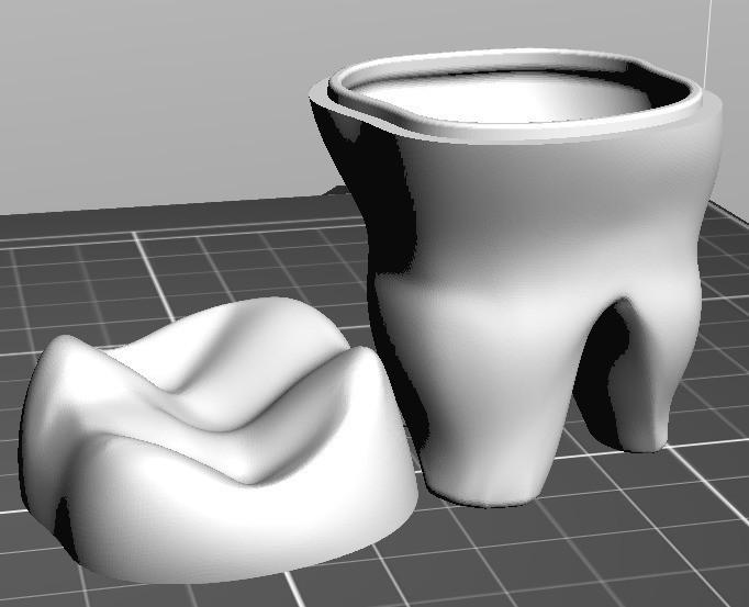 e3b56595fd571f953199ba90f6729690_display_large.jpg Download free STL file Teeth Box • 3D print object, omni-moulage