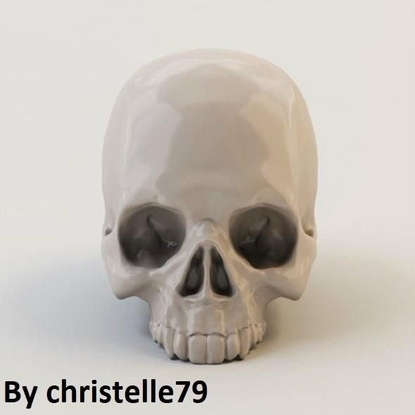 product_image_14564.jpg Download free STL file Human Skull • 3D print model, christelle79