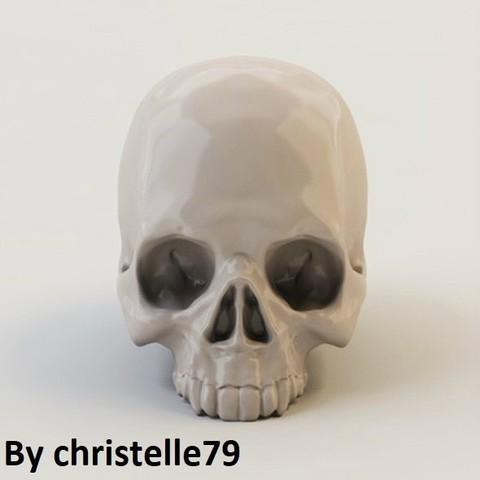 diseños 3d Cráneo Humano ・ Cults