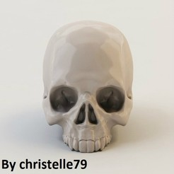 3d printer files Human Skull, christelle79