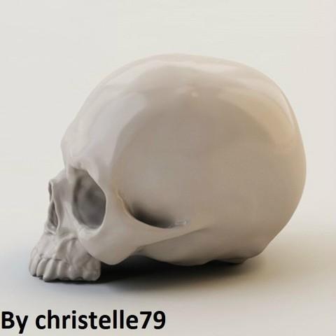 product_image_14566.jpg Download free STL file Human Skull • 3D print model, christelle79