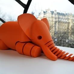 STL file Elephant, christelle79