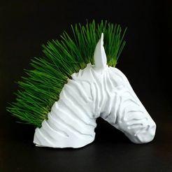 120233750_699856214258359_3120572902996686026_n.jpg Download free STL file Zebra Planter • 3D printable object, DrFemPop