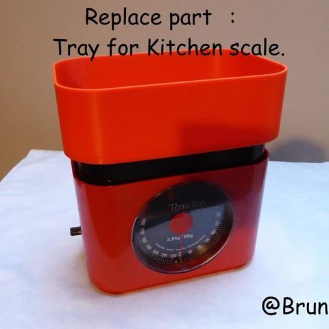 Archivos STL gratis Bandeja de repuesto para Balanza de cocina Terraillon, brunoschaefer41