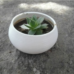 Free 3d printer files Parametric succulent planter, UniversalMaker