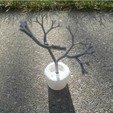 Download free STL file Parametic Artificial Tree Math art, UniversalMaker