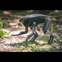 Modelos 3D gratis Espejo Negro - Metalhead - Perro, WinstonPhelps