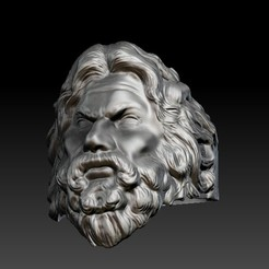 ZBrush Document.jpg Download OBJ file Zeus ring  • Object to 3D print, jnrpadua