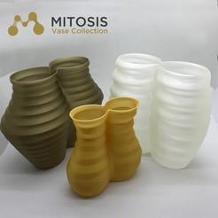 Mitosis_MMF.jpg Download free STL file Mitosis Vase Collection • 3D printable model, Filar3D