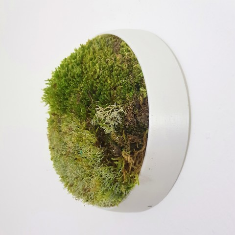 "3D print files ""Isora"" Vertical garden for moss, imaginestudio_idc"