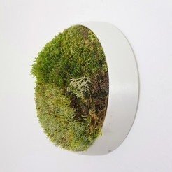 "Download 3D printing files ""Isora Collection"" Vertical garden for moss, imaginestudio_idc"