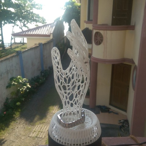 IMAG0368.jpg Download STL file Her Hand Tree of Jewelry • 3D print design, SamVoro