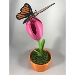 Télécharger fichier impression 3D gratuit Papillon, gzumwalt