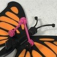 Download free 3D printer designs Butterfly, gzumwalt