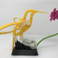 Descargar diseños 3D gratis Colibrí, gzumwalt