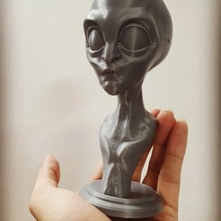 Download 3D printing models Alien Stylized Bust STL File, 3DPrintModelStoreSS