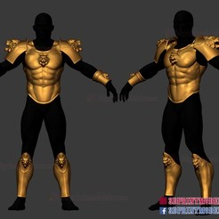 Roman_Muscle_Armor_Tiger_3d_print_file_01.jpg Download STL file Larp Armor - Classical Tiger Roman Muscle Armor Set Cosplay 3D print model • Template to 3D print, 3DPrintModelStoreSS