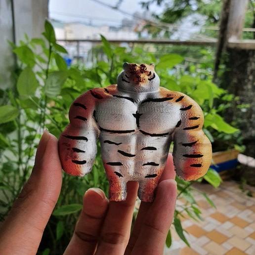 Télécharger STL gratuit Tiger Muscle Meme - Cadeau mignon de Tigre Swole, 3DPrintModelStoreSS