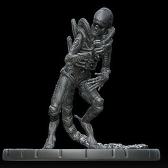 d1.jpg Download STL file Xenomorph #4 • Object to 3D print, payo