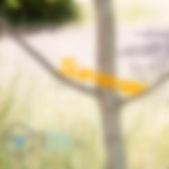 Modèle 3D gratuit écriture summer, TiZYX-fr