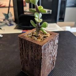 Free STL file Wood Zen Vase, ianmclein