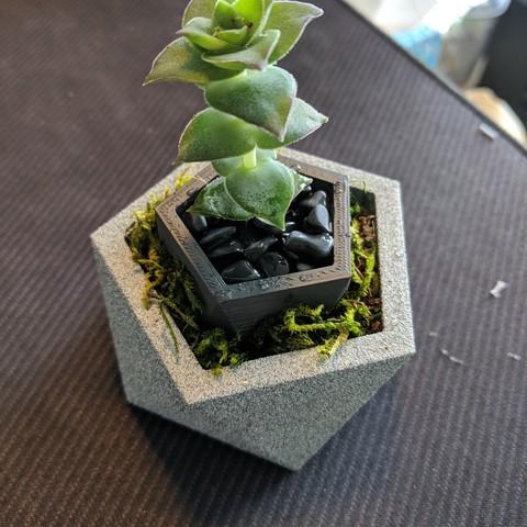 Download free 3D printing templates Octo Vase, ianmclein