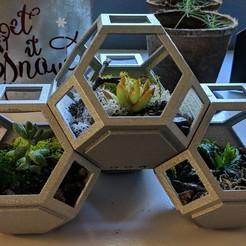 Impresiones 3D gratis Plantygon - Plantadora Modular de Apilamiento Geométrico para Suculentas, ianmclein