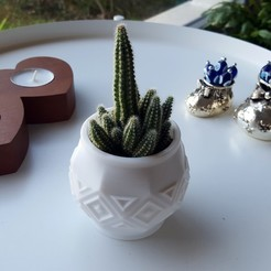 Download STL files SUCCULENT PLANTER 7, metac