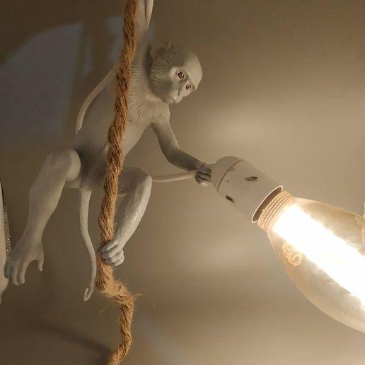 Télécharger STL Lampe de singe, Selfi3D