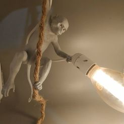 Download STL files Monkey Lamp, Selfi3D