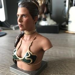 Free 3D print files Slave Leia, N3m