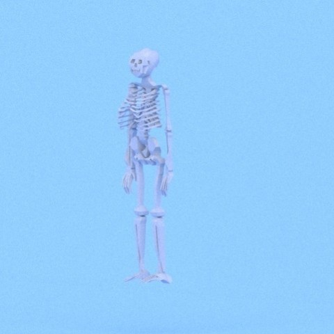 3D printing model Low poly skeleton, modimodi