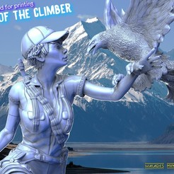 4е4.jpg Download STL file The soul of the climber • 3D printer object, walades