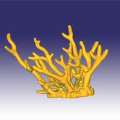 staghorn yeni.png Download OBJ file Staghorn coral • Object to 3D print, Dsignrcmc