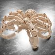 Download STL files Spider Robot, Alessandro_Palma