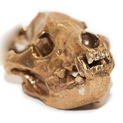 Archivos STL gratis Colgante de cráneo de hiena con asa, Hertel3D