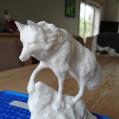 Fichier impression 3D Snow wolf, douglasvroonen
