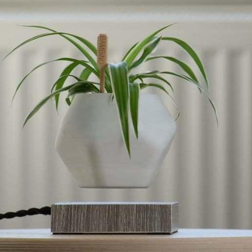 Sequence_01.00_07_21_10.Still004.jpg Download free STL file Levetating Plant Pot • 3D print design, MakerMind