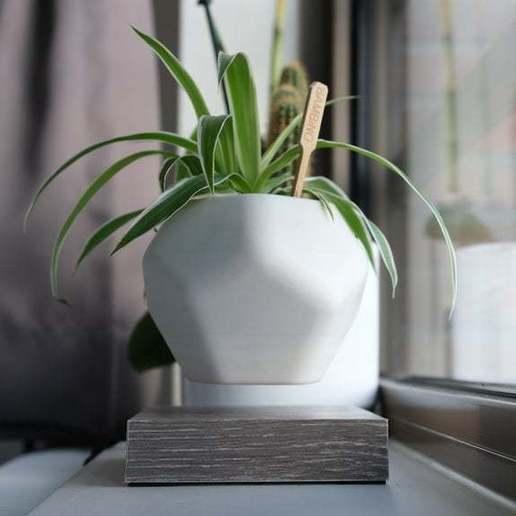 Sequence_01.00_07_15_23.Still003.jpg Download free STL file Levetating Plant Pot • 3D print design, MakerMind