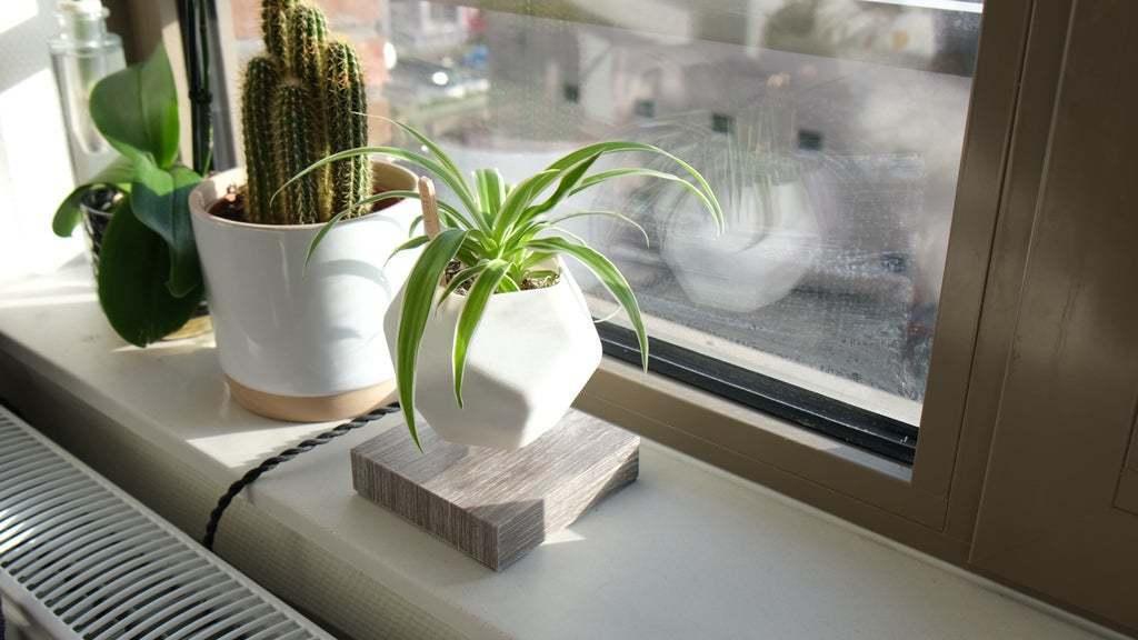 Sequence_01.00_01_42_18.Still002.jpg Download free STL file Levetating Plant Pot • 3D print design, MakerMind